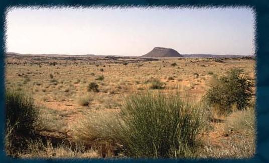 desertification5.jpg