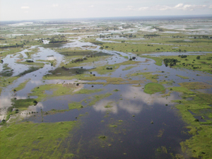 moz_irin_floods_crop.jpg