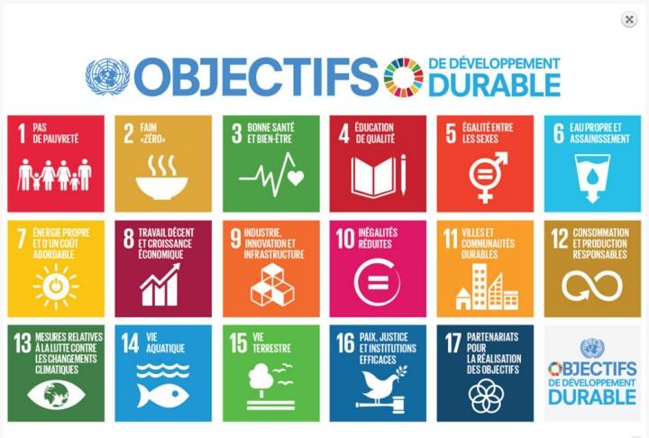 Objectifs du Développement Durable 2015-2030 (ODD) - Source : PNUD