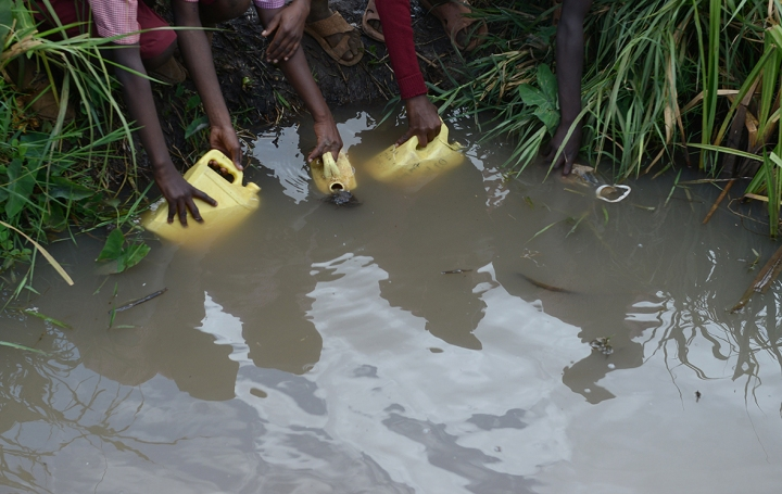 Children collect water from a swamp in Mwea, Kenya AFP