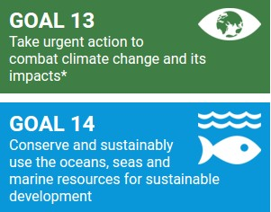Objectifs de développement durable 13 et 14
