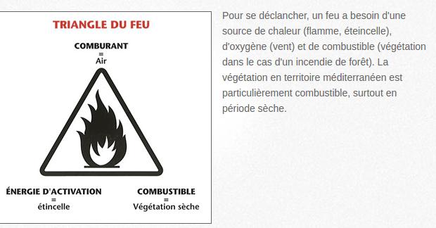 Facteurs déclencheurs des feux de forêt