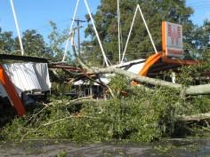 Chute d'un chêne sur un restaurant à Tallahassee - 02/09/2016. Beaucoup d'entreprises et de résidences à Tallahassee sont sans électricité et plusieurs routes sont bloquées par des arbres arrachés par l'ouragan Hermine. (AP Photo / Brendan Farrington)