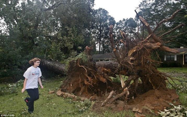 Les services d'urgence ont répondu à plus de 300 appels durant la nuit. Le maire de Tallahassee estime qu'environ 100 000 résidents de la région étaient sans électricité vendredi 02/09/2016 - source : http://www.dailymail.co.uk/