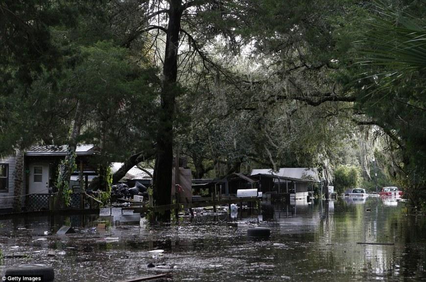 Rue de Tampa sous l'eau: le vent de l'ouragan Hermine a couché des arbres et des lignes électriques et des ondes de tempête ont innondé les zones côtières 02/09/2016 http://www.dailymail.co.uk