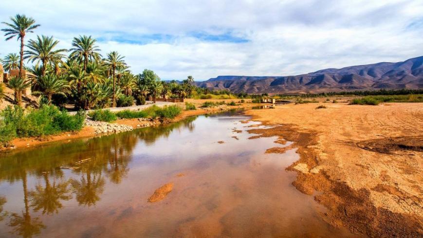 Oasis deTafilalet, projet de développement durable au Maroc #COP22