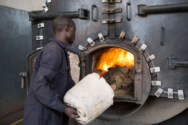 Les rondins de déchets végétaux sont chargés dans la chaudière. Ici dans l'usine de textile de Spinners & Spinners, au Kenya. CRÉDITS : MATTEO MAILLARD