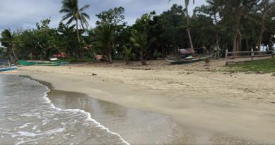 Côte de a région de Casiguran, Photos Google Maps, license CC
