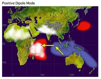 Schéma des anomalies de la SST (en rouge SST se réchauffant ; en bleu se refroidissant) pendant un événement positif du Dipôle Océan Indien. Les taches blanches indiquent l'activité nuageuse et pluvieuse. Les flèches indiquent la direction du vent.